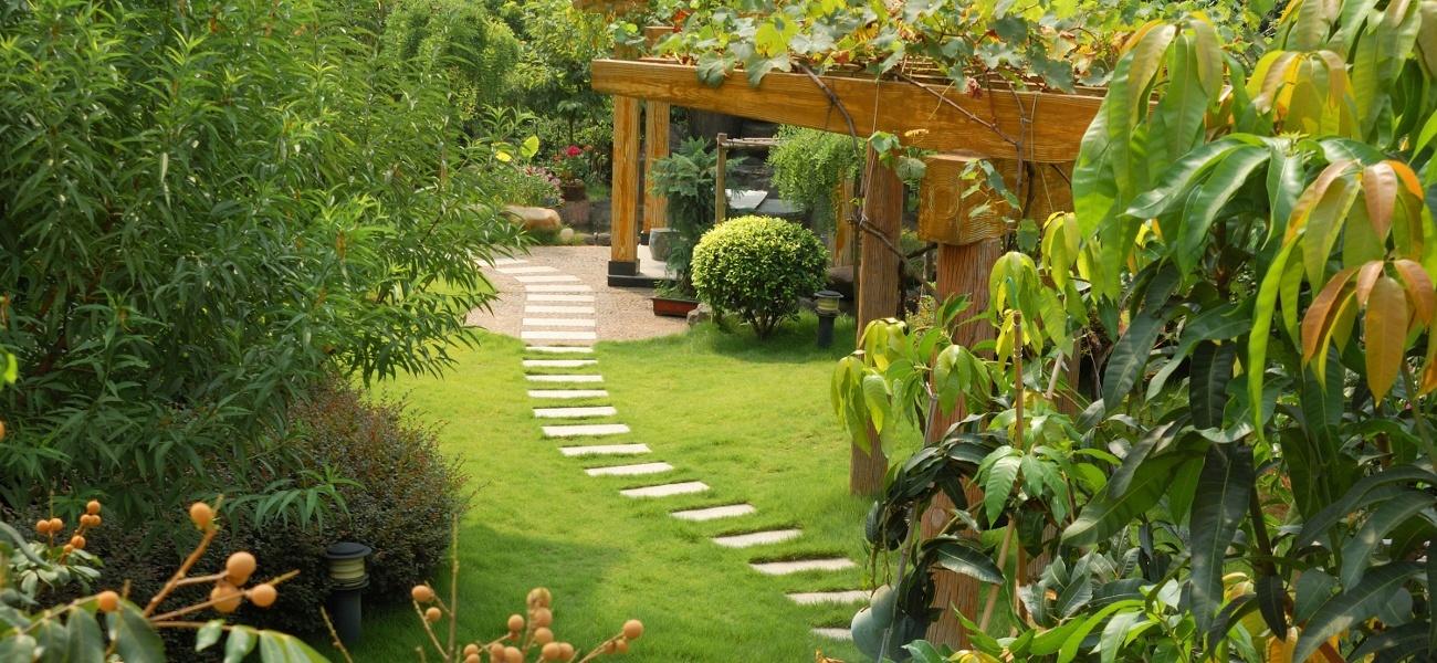 aménagement jardin1